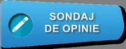 Sondaje de opinii